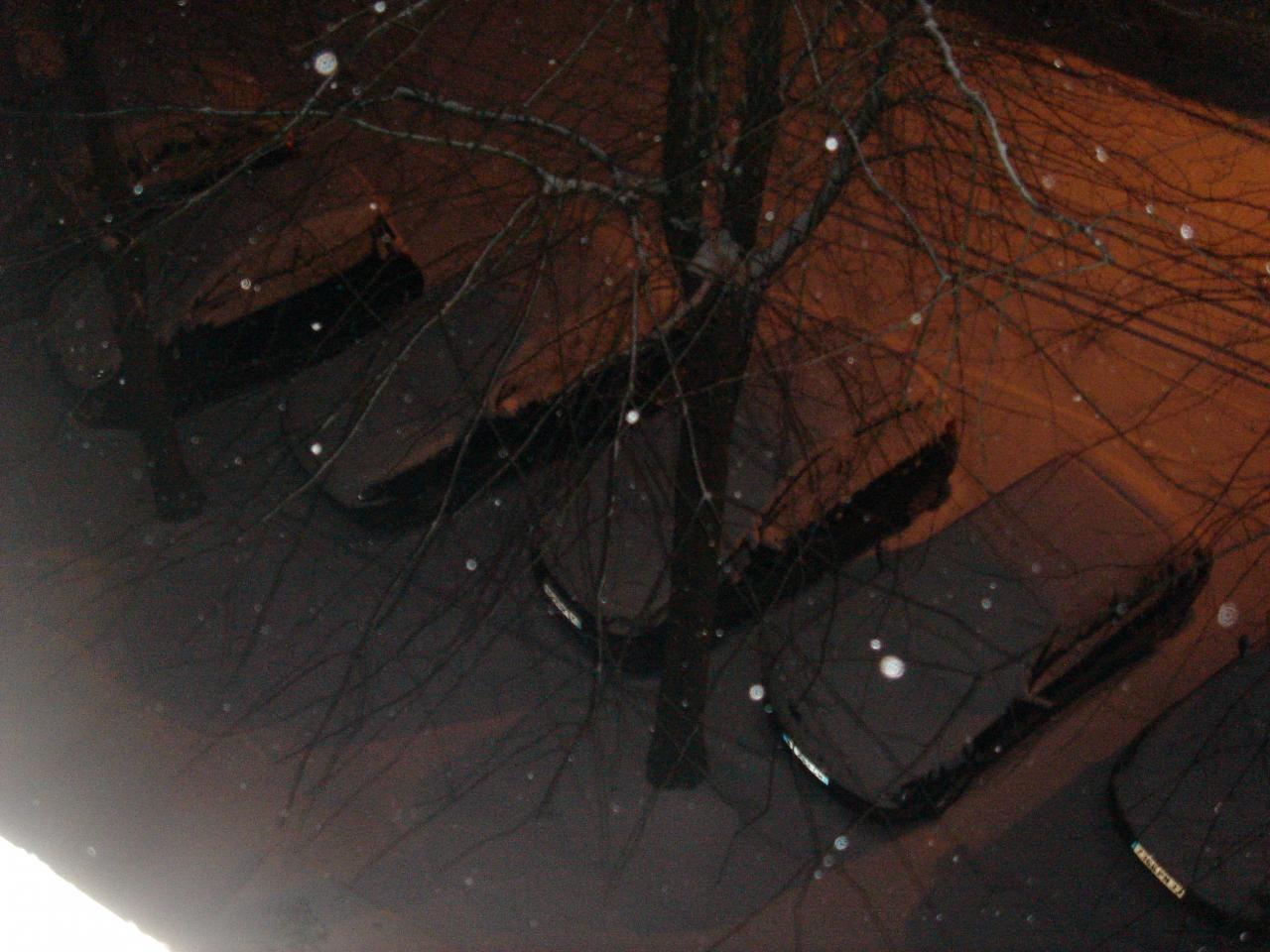 2012 02 05 dans la neige dimanche 5 02 2012 3