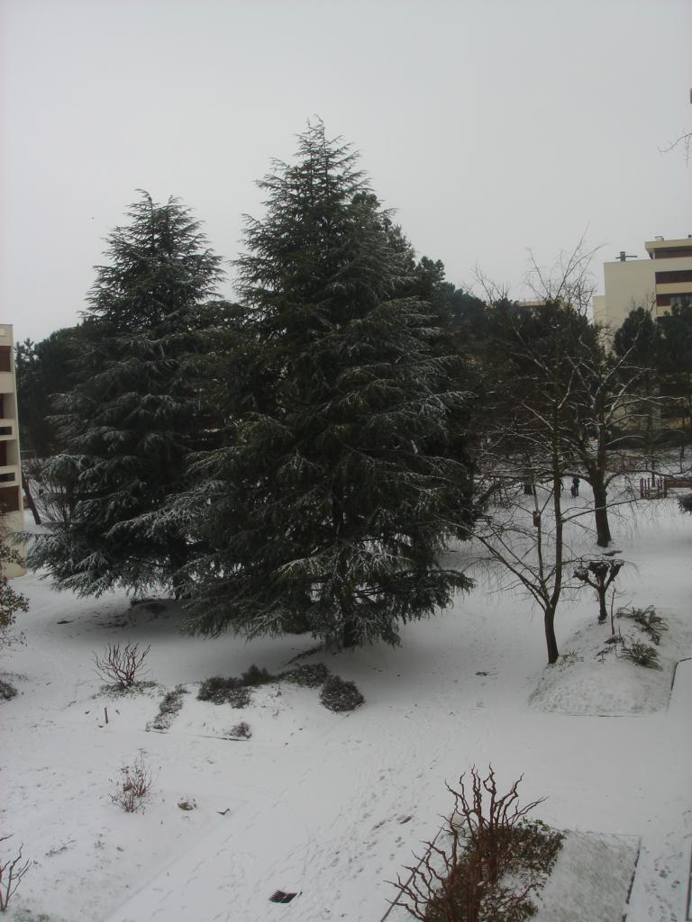 2012 02 05 la neige du dimanche 5 02 2012 le jour 5