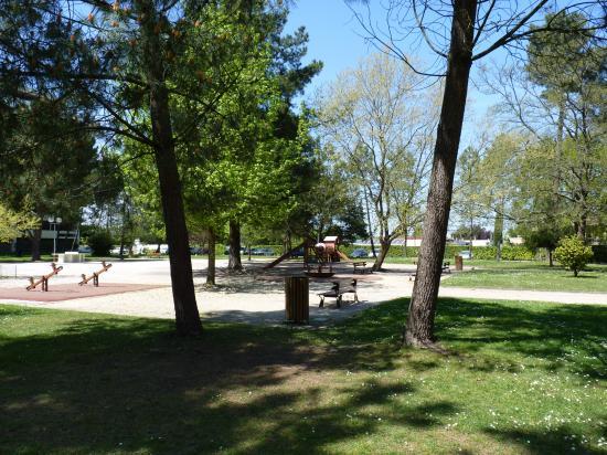 Découverte du parc