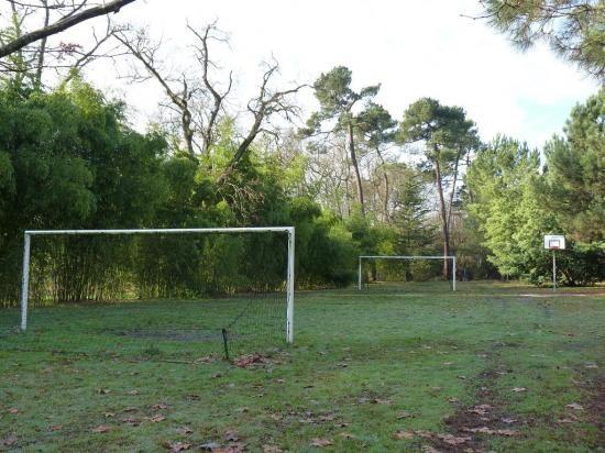Le terrain de foot en automne 1